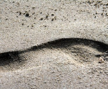 sandy footprint